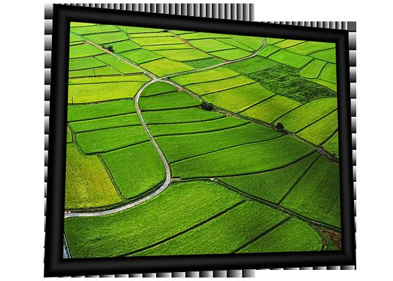Modigliani Velvet - VA 250cm x 140cm - 16:9 Format - Fixed Frame Screen - 4KUHD surface - Velvet Covered